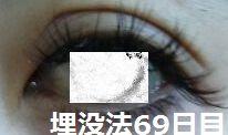 69days2.jpg