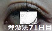 71days2.jpg