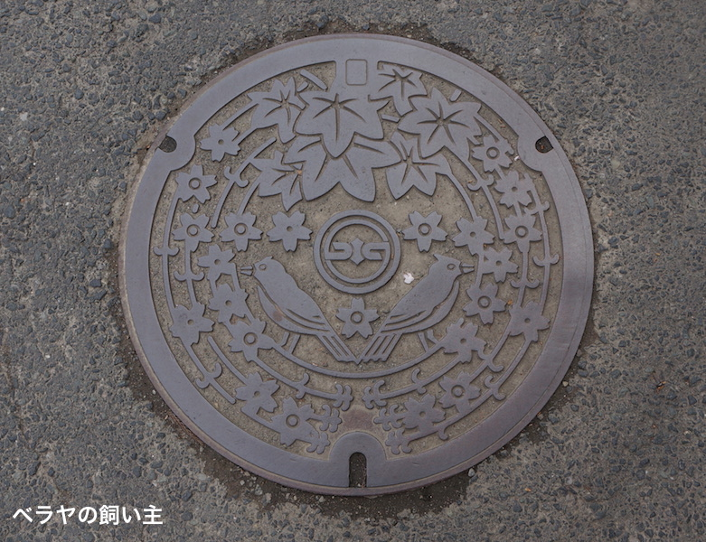 BNK_旧水沢市DSC06207
