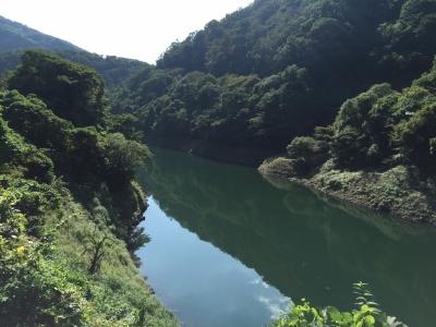 宇治川ライン11