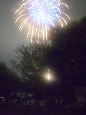 公園で花火見物