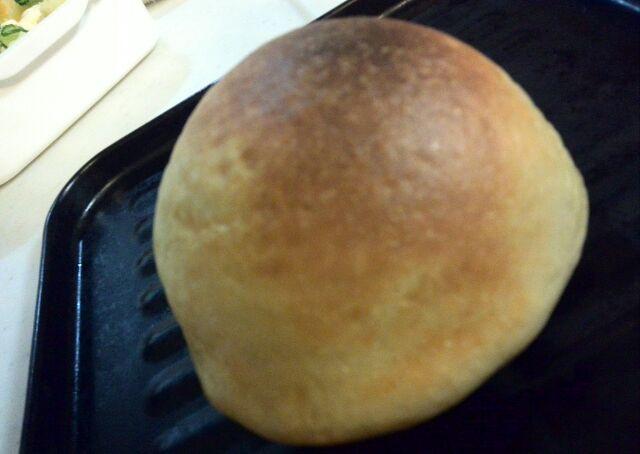 今日のピタパン
