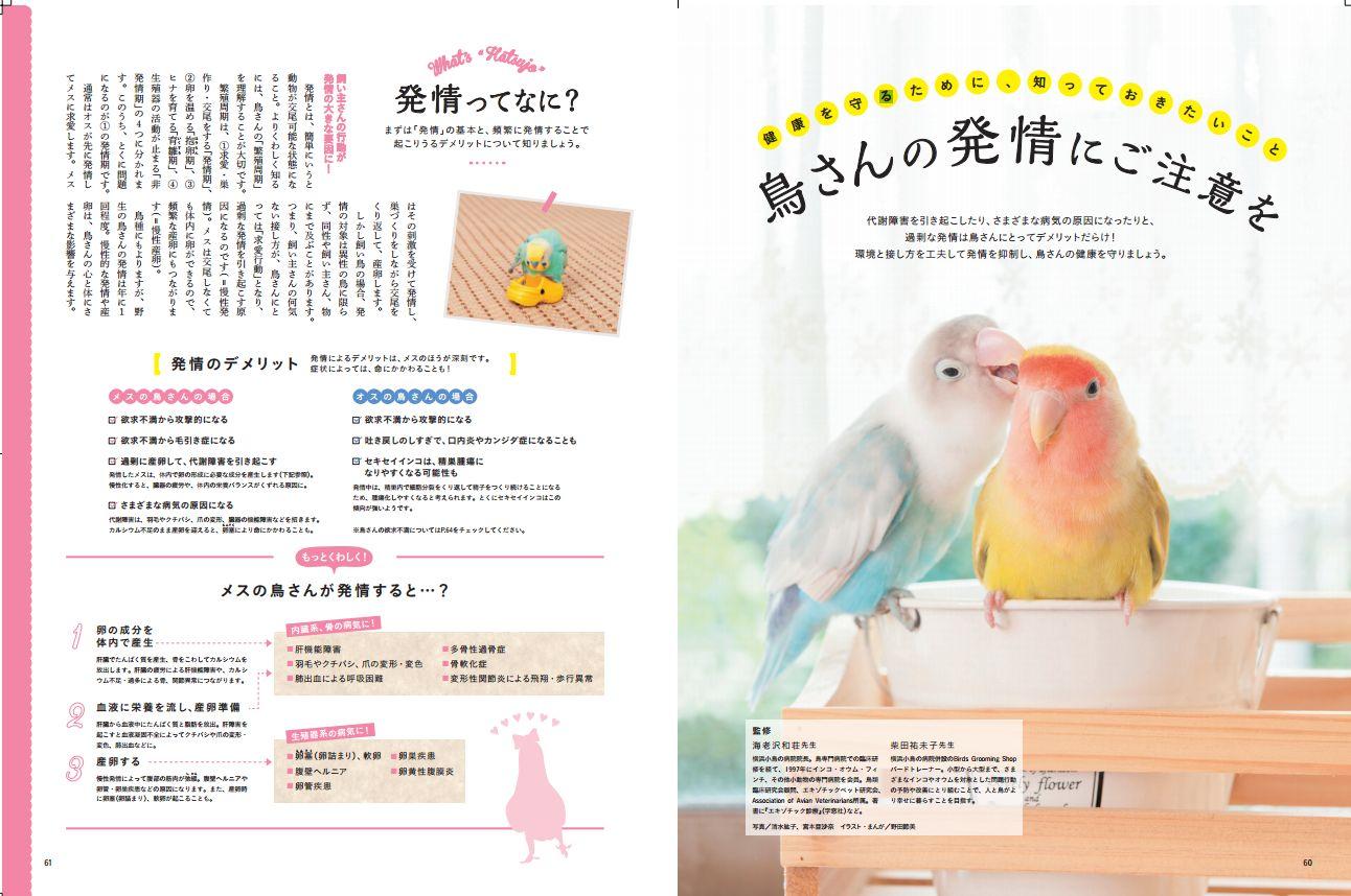 小鳥のキモチvol3(発情について)1