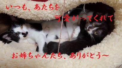 20151017_14.jpg