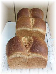 151013 山型食パン