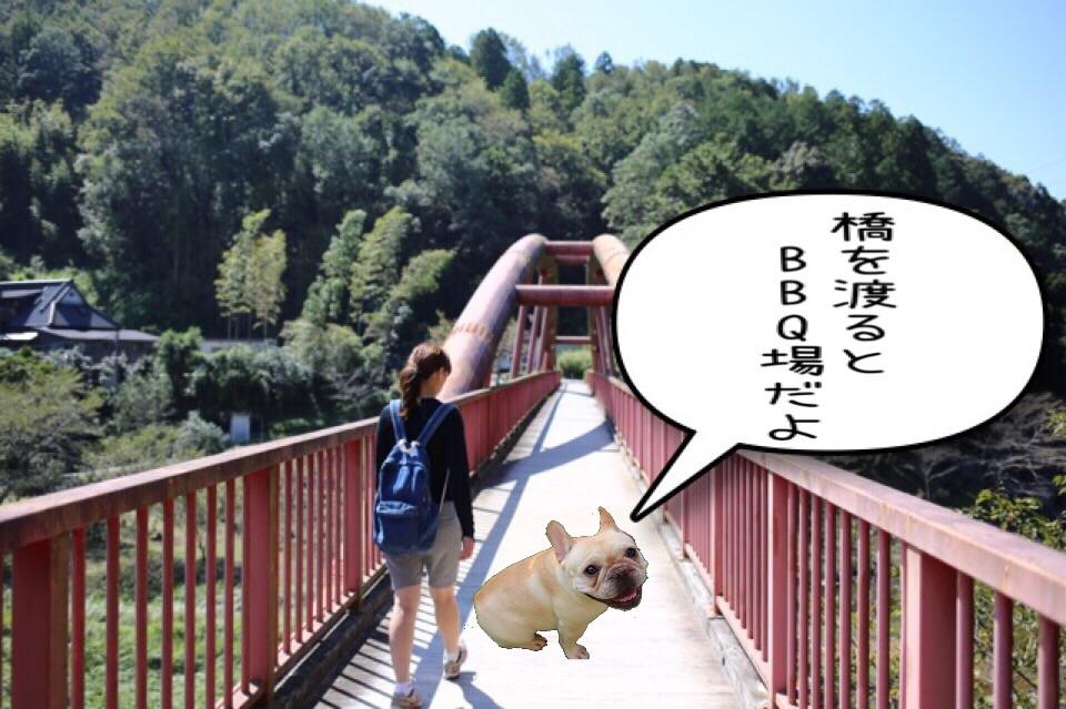 フレンチブルドッグ お出掛け 王滝渓谷 2