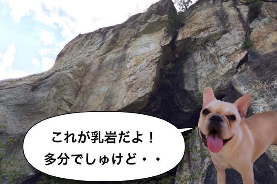 フレブル ハイキング 秘境 渓谷 6