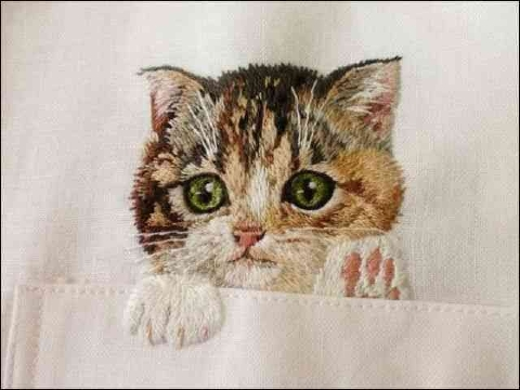 日本人刺繍作家クボタヒロコさんの猫シャツ刺繍