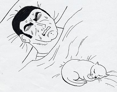 猫が気になって寝苦しいゴルゴ13