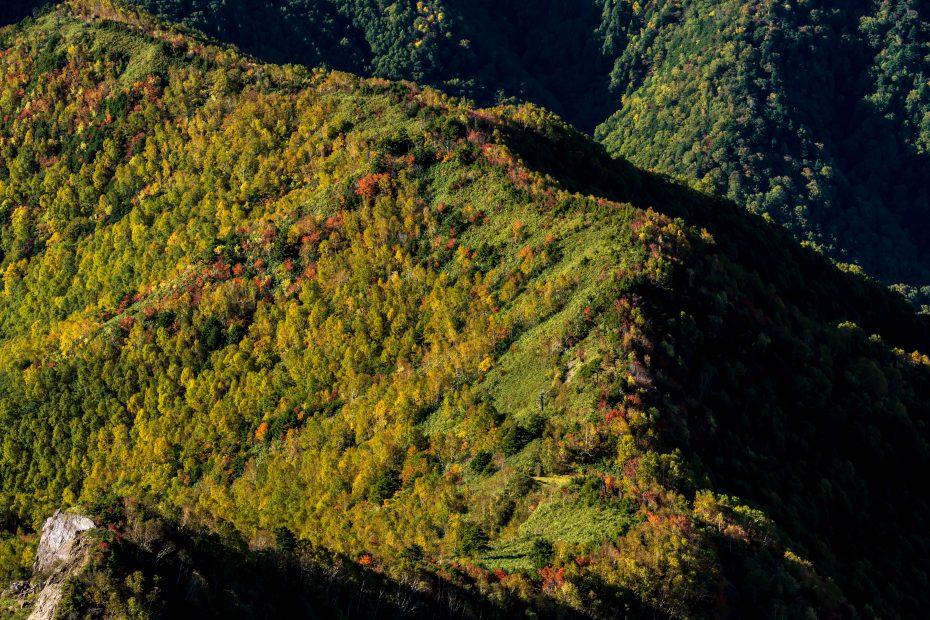 2015.10.3笠ヶ岳7