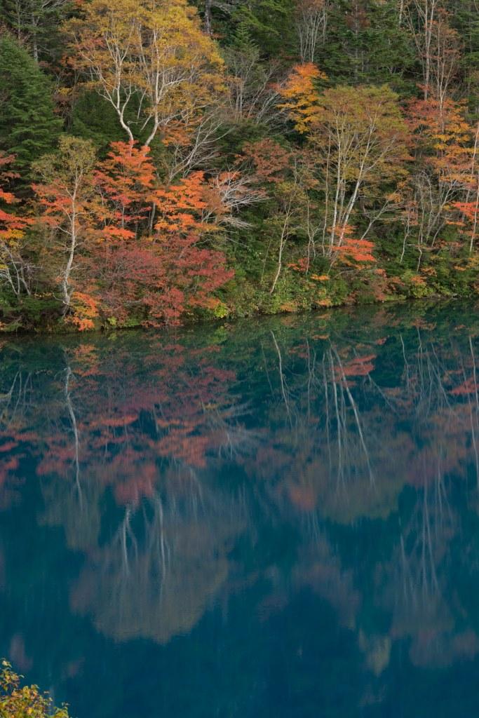 2015.10.03志賀高原池めぐり26