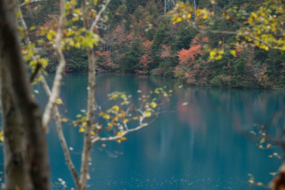 2015.10.03志賀高原池めぐり22