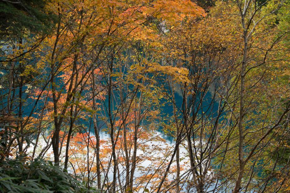 2015.10.03志賀高原池めぐり23