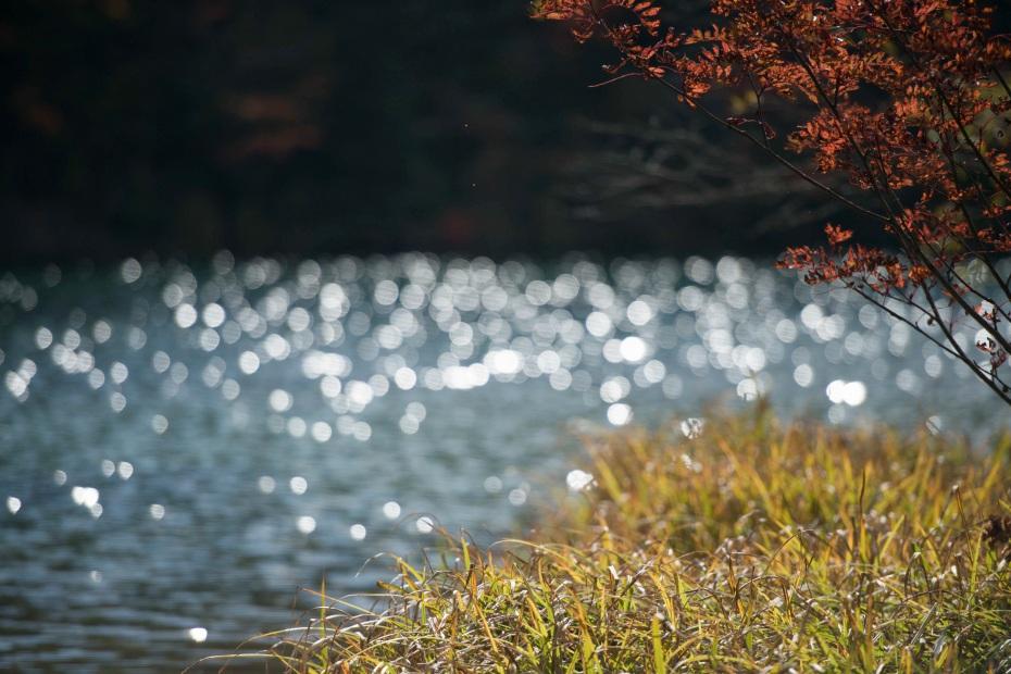 2015.10.03志賀高原池めぐり18