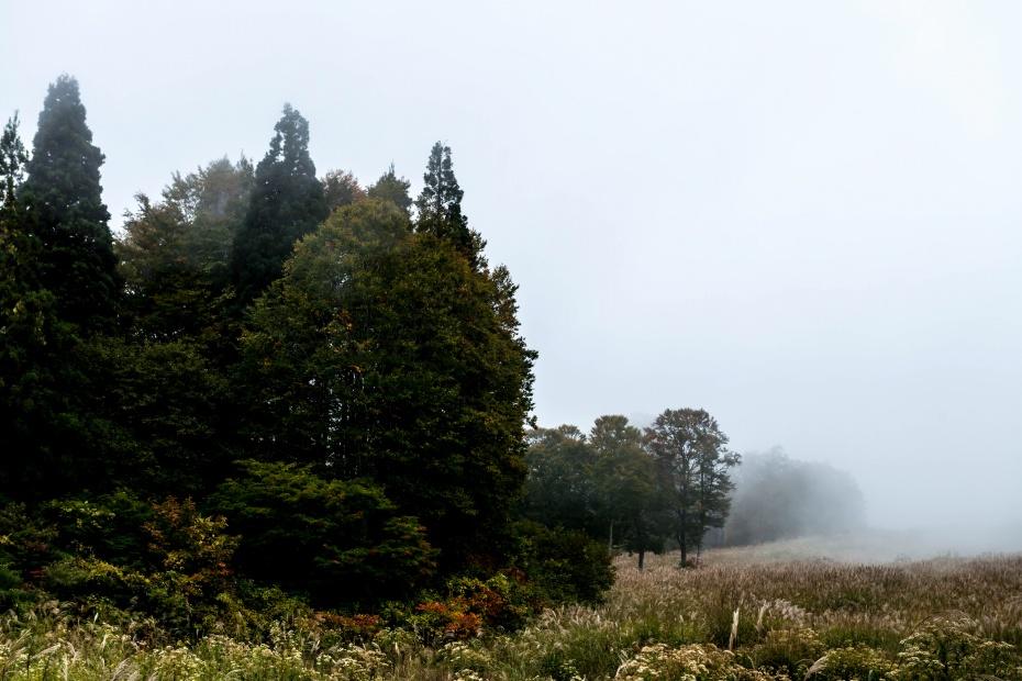 2015.10.04上の平高原16