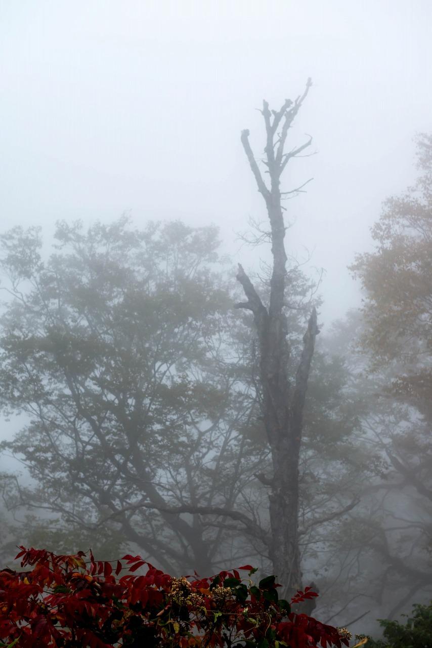 2015.10.04上の平高原6