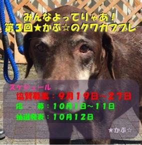 ★かぶ☆さんプレ