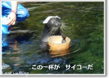 201509214_4.jpg