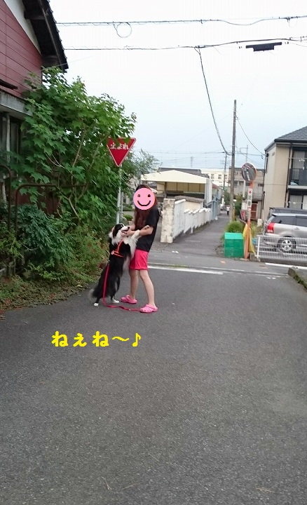s-_20150901_150005.jpg