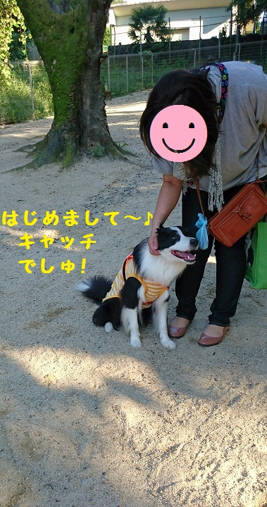 s-_20150915_105602.jpg