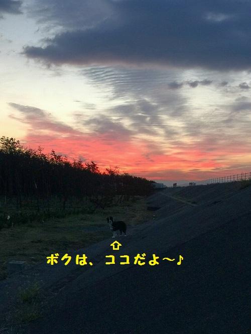s-_20151002_150650.jpg