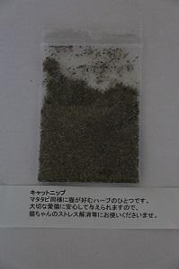 150325-2.jpg