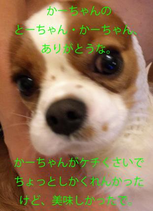 20150822-99.jpg