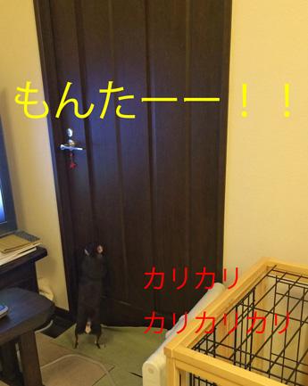 20150914-7.jpg