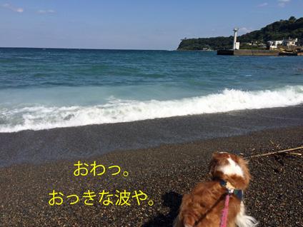 20151019-④ 20151006