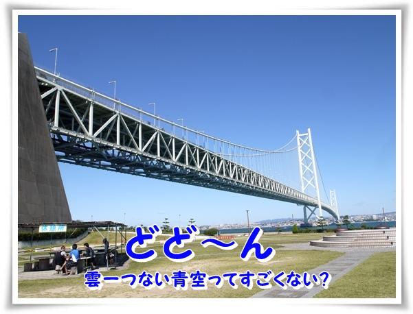 P1100902_1.jpg