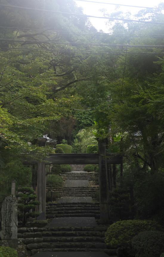 身延-514-1