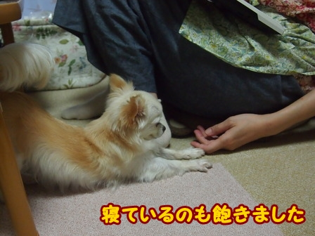 blog6666a.jpg
