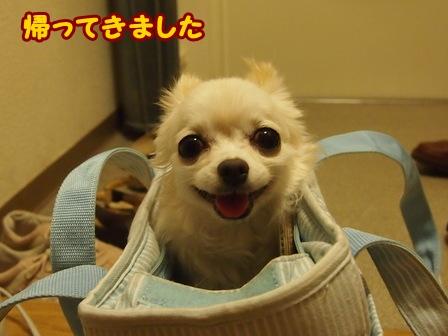blog6675a.jpg