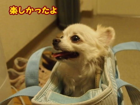 blog6677a.jpg