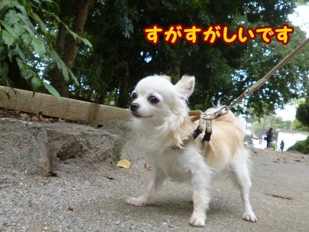 blog6713a.jpg