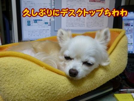 blog6747a.jpg