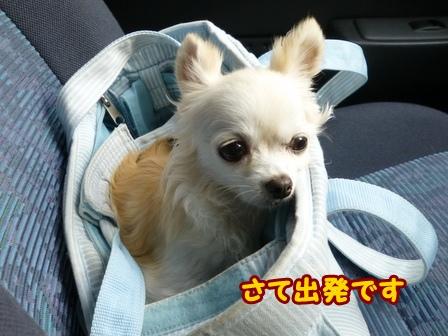 blog6795a.jpg