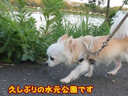 blog6847a.jpg