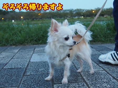 blog6858a.jpg