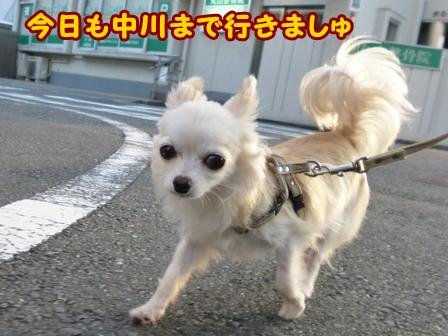 blog6881a.jpg