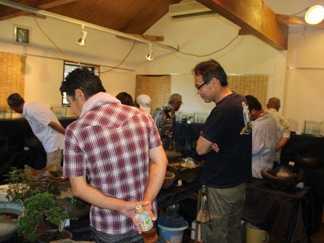 九州メダカの会展示会822~23 040