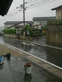 2015_09016132.jpg