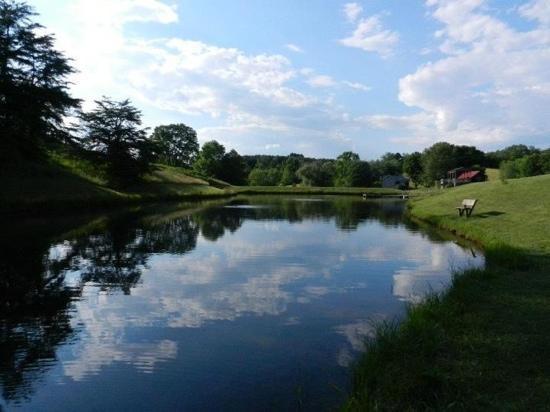 the-beautiful-pond.jpg