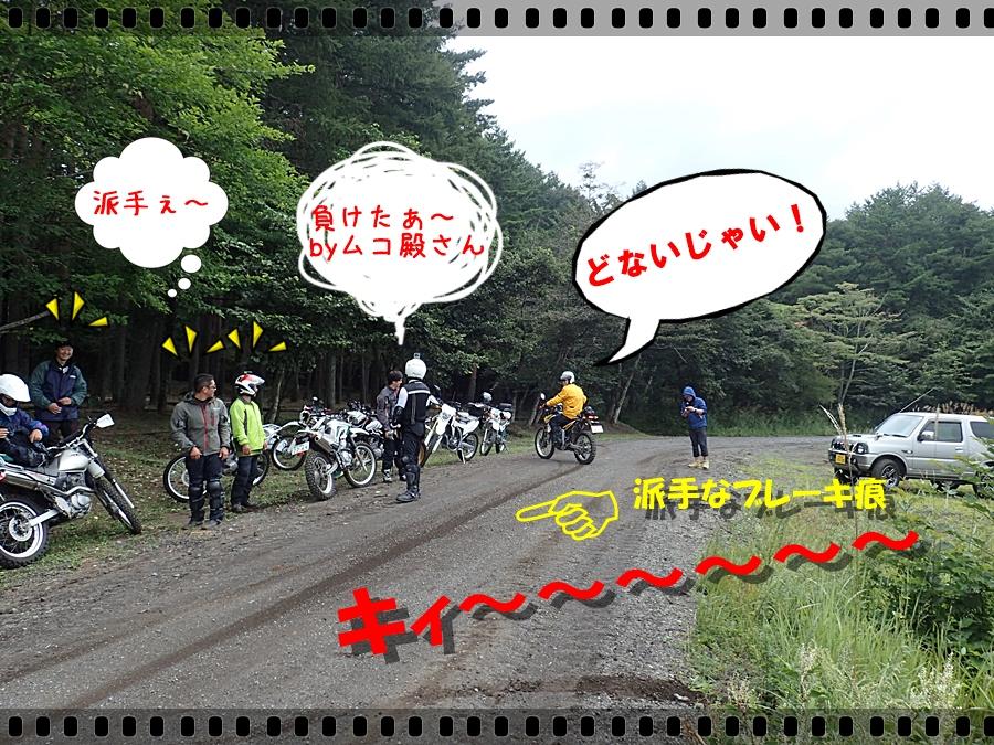 P9060504a.jpg
