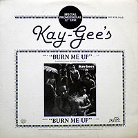 KayGees-BurnMeUp200.jpg