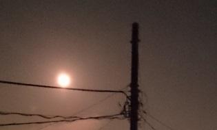 1287こもれ月光