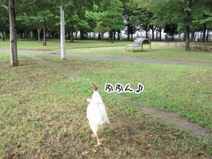 二太2015/09/02-1