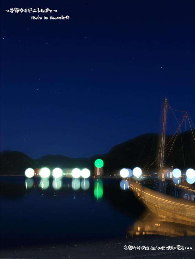 茂浦漁港だす