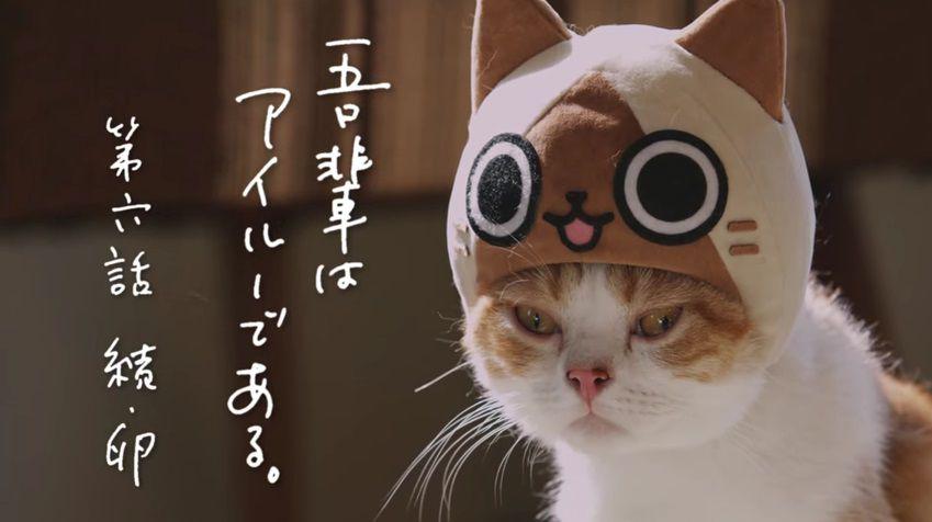 image_2829.jpg