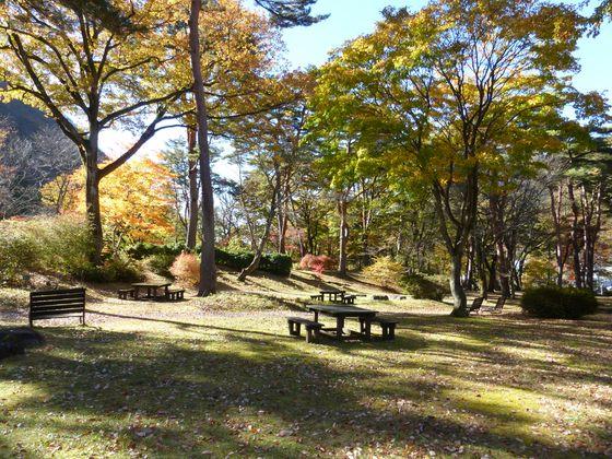 秋色に染まる林道